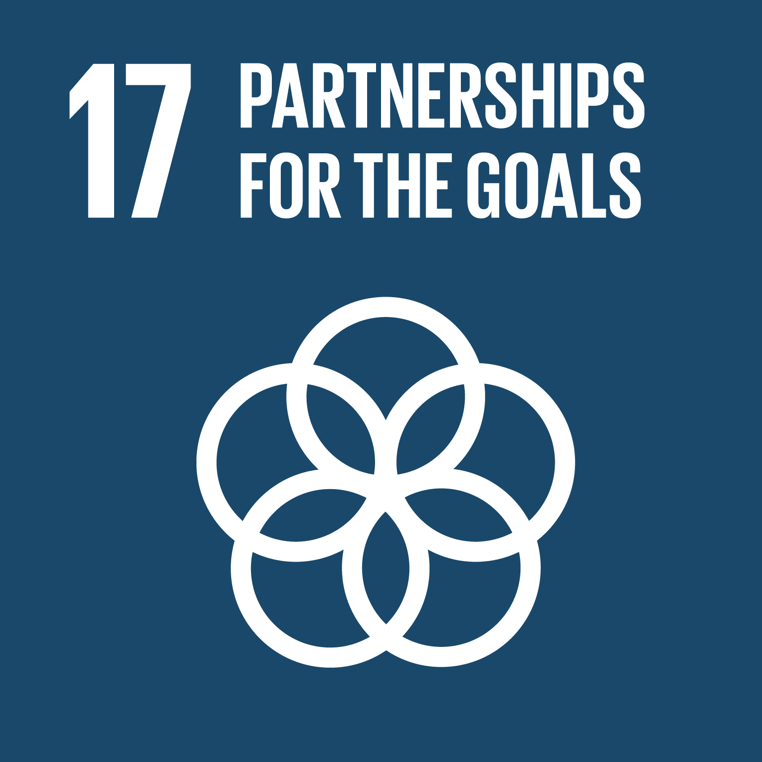 To achieve the goals in partnership